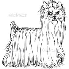 Halloween coloring pages thanksgiving coloring pages color by number worksheets color by numbber addition worksheets. Akc Yorkshire Terrier Standing Coloring Pages Pinterest Yorkshire Terrier Yorkie Wall Art Yorkshire Terrier Dog