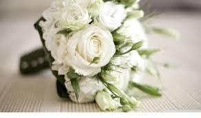 """Attēlu rezultāti vaicājumam """"baltas rozes"""""""