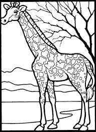 printable animal coloring pages free animals zoo sheets