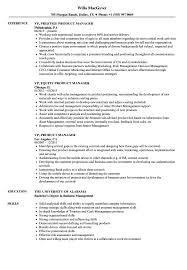 Vp Product Manager Resume Samples Velvet Jobs