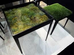 terrarium furniture. terrarium table furniture r