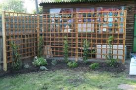 Climbing Plant Trellis That Will Give Your Garden A Satisfying LookClimbing Plant Trellis