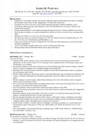 Professional Network Manager Resume Objective Network Consultant