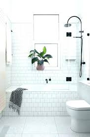 bath and shower combination tub combos for small bathrooms best bathtub combo ideas on with