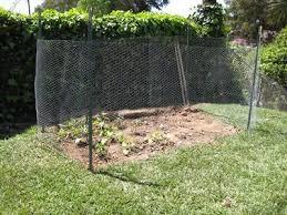 Wire Garden Fence Garden Fence Ideas Chicken Wire Decorating Clear