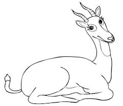 Small Picture Uganda Kob Antelope With Funny Smile Coloring Page Animal