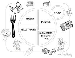 Small Picture healthy plate coloring page 28 images healthy food plate