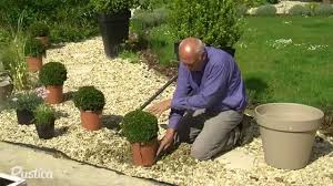 Habiller Un Gravier Avec Des Plantes Youtube