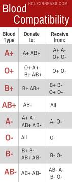 Who Are Your Blood Types Ancestors Positive And Negative