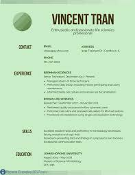 best resume headline examples good examples of resume title resume title  examples online .