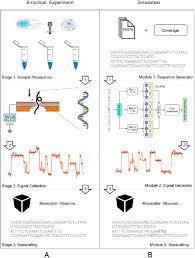 Deepsimulator A Deep Simulator For Nanopore Sequencing