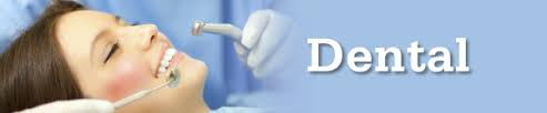 On this page you can see full information about delta dental clinic in 101 adrian street, ohio: Department Of Administrative Services Divisions Human Resources Hrd Benefits Administration Dental