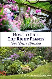 Small Picture How To Pick The Right Plants For Your Garden Plants Gardens and