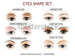 set of eyes shape diffe shapes close set wide set protruding on
