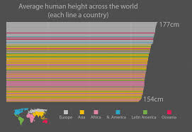 The Average Height Digg