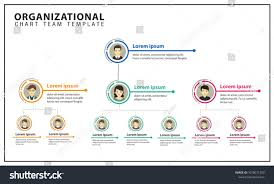 S Corp Organizational Chart Organization Chart Team Business Corporation
