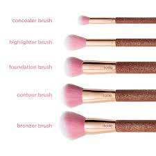 what brush to use for contour. goal getters contour brush set what to use for