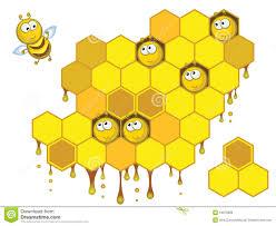 фото соты пчел