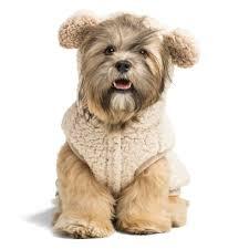 Top Paw Bear Fleece Pet Hoodie Dog Hoodie Cute Dog