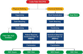 Palm Oil Refining Flow Chart Palm Oil Palm Plants