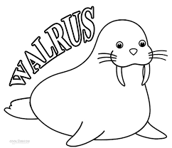 Small Picture Printable Walrus Coloring Pages For Kids Cool2bKids