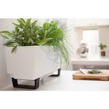bench top mini indoor and outdoor garden