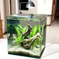 office desk aquarium. Wonderful Aquarium Office Furniture Desk N