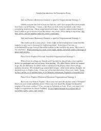 descriptive essay definition examples characteristics video object    examples of descriptive essay object description essay example thrilling object description essay example essay medium