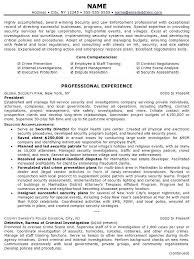 Resume Sample 14 Security Law Enforcement Professional