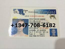 Id Fakes - World Fake Maryland Wide