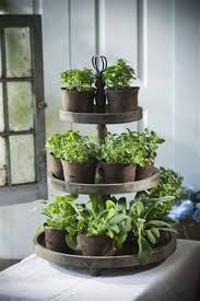 23 herb garden ideas how to grow