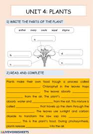 In this science worksheet your child draws a line joining each whole plant with the part of it that will in this science worksheet, your child learns about edible plants and identifies common produce as. Natural Science Plants Worksheet