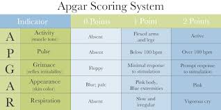 What Is The Apgar Score 5 Assessments Of Newborn Health