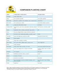 Companion Planting Chart For Crop Edit Fill Sign Online