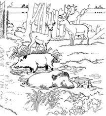 Herten Kleurplaten Animaatjesnl