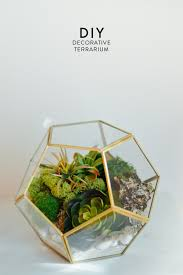 ... DIY decorative terrarium project that anyone can do with a quick trip  to the craft store
