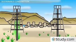 Environmental Sustainability  Homework Help for AP Science     Study com    Sustainable Consumption  Definition and Complexities