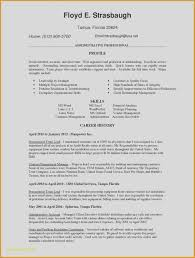 Ten Ideas To Organize Your Invoice And Resume Template Ideas