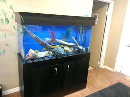 furniture fish tanks. Appealing This Is A Great Way To Improve The Atmosphere In Office And Of Course Tax Write Off Furniture Best Fish Tanks