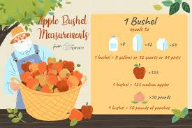 How Much Do You Get In A Bushel