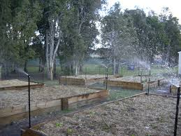 Stephanie Alexander Kitchen Garden Schools Neta Helps To Bring Currumbin Community Special Schools Kitchen