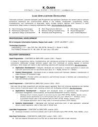 perl programmer resume resume sas programmer resume