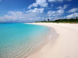 「真夏 海」の画像検索結果