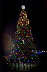 The Show Me City's beautiful holiday tree can be viewed at the City Hall  Complex,