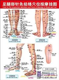 Acupuncture Foot Chart Acupuncture Points Chart Feet Bedowntowndaytona Com