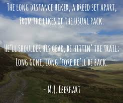 Hiking Quotes Gorgeous 48 Hiking Quotes Quotes For Inspiration And Motivation Walking