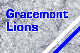 Image result for gracemont