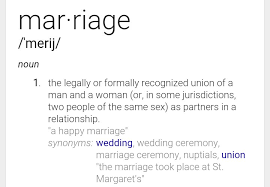 Meaning of gay marriage