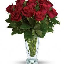 teleflora s rose clique dozen red roses