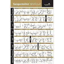 amazon laminated suspension exercise poster strength chart build muscle tone tighten home gym resistance workout routine fitness